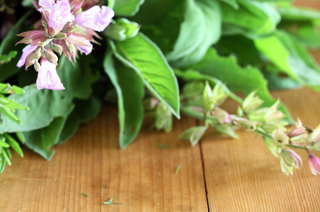 Herbs_5_misc_massive