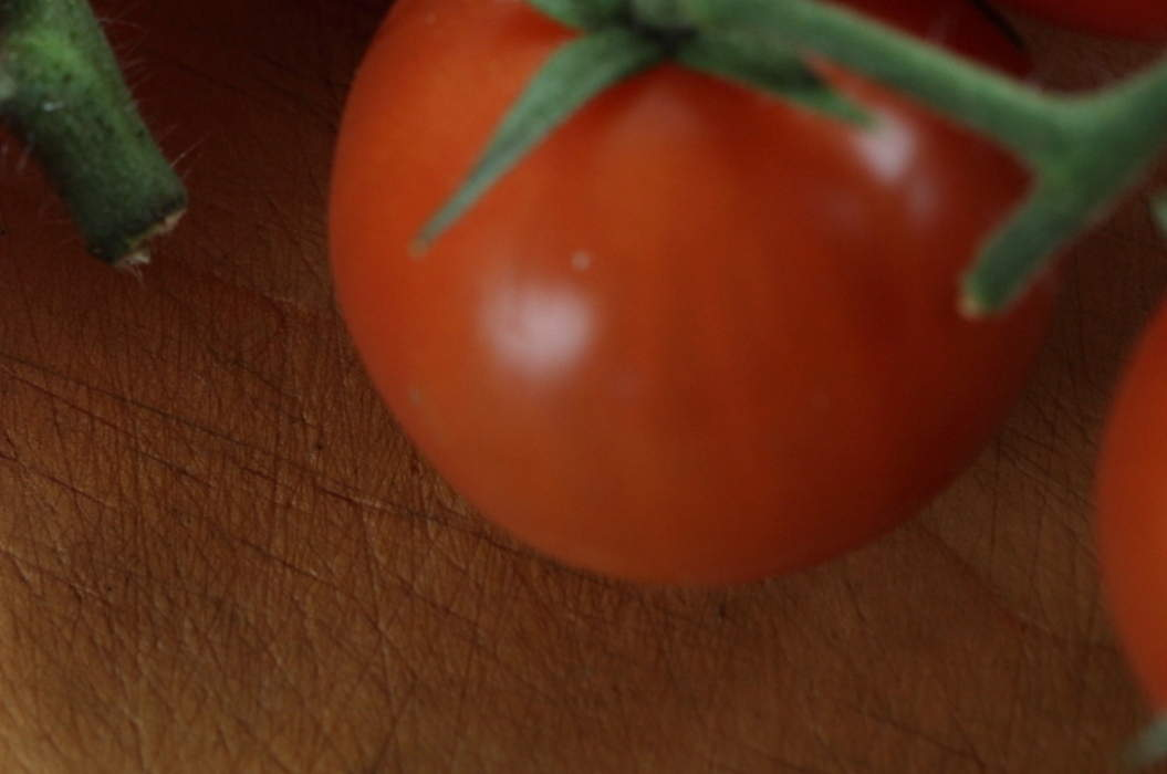 Vine_tomatoes04_misc_massive