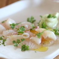 Kingfish_sashimi_with_wasabi_mayo_recipes_thumbnail