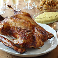 Roast_goose_with_apple__onion_and_sage_stuffing__recipes_thumbnail