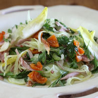 Chicken_mustard_apricot_and_fennel_salad_3_-_approved_recipes_thumbnail