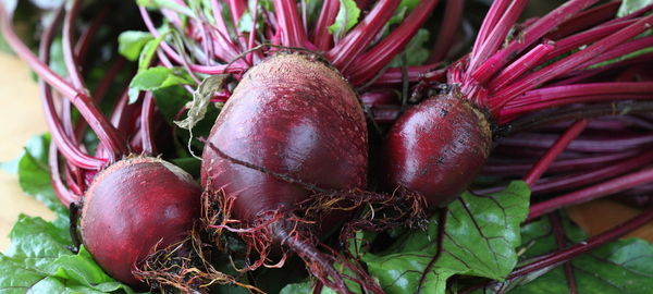 Beetroots 01