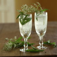 Sparkling_chardonnay_lemon_verbena_cocktail_4_recipes_thumbnail